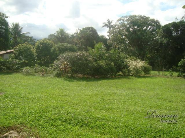 Linda Área Rural com 100 alqueires em Antonina/Paraná