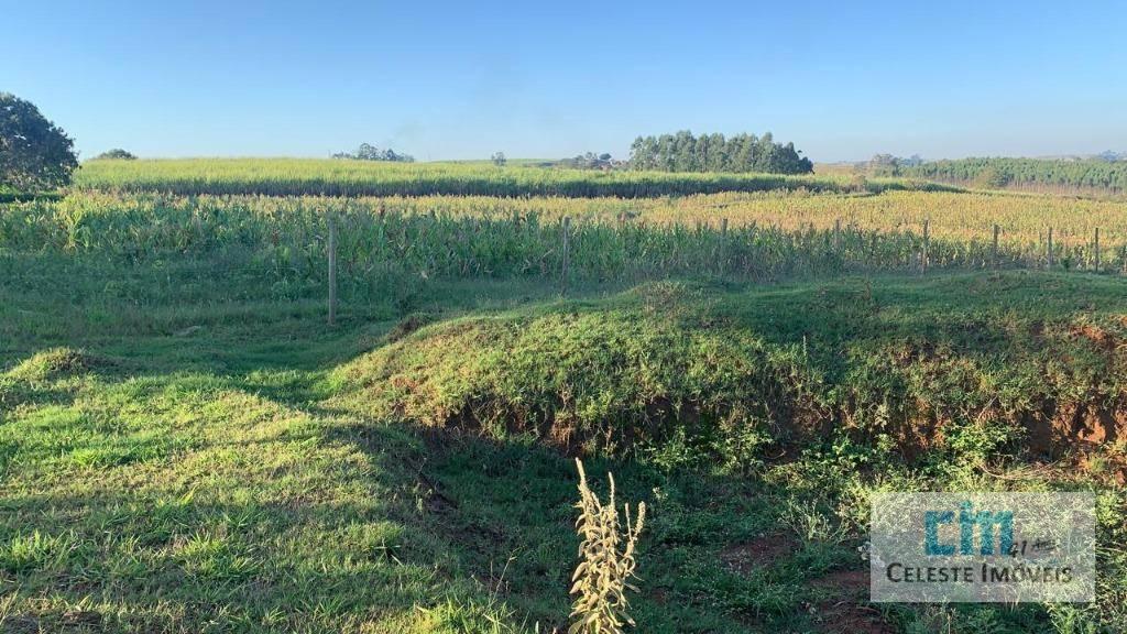 Terreno à venda, 20000 m² por R$ 300.000,00 - Boituville - Boituva/SP