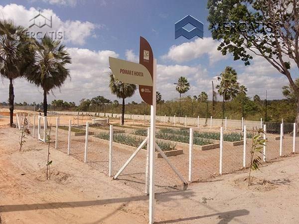 pomar | horta