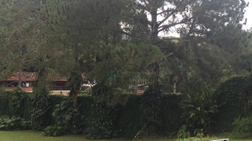 Casa à venda em Fazenda Boa Fé, Teresópolis - RJ - Foto 7