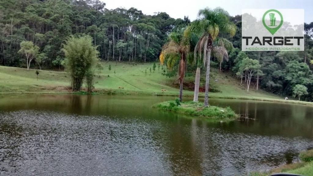 Chácara com 4 dormitórios à venda, 120000 m² por R$ 2.250.000 - Carmo Messias - Ibiúna/SP