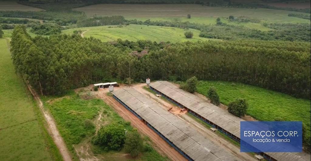 Fazenda à venda, 1.113.200m² - Do Morro - Capela do Alto/SP