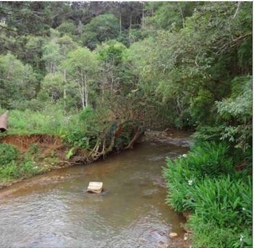 Fazenda à venda, 797000 m² por R$ 1.155.000,00 - Caetê - Rio Branco do Sul/PR