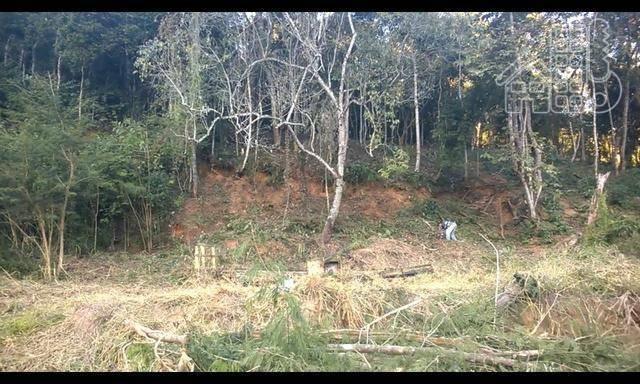 Terreno à venda, 1800 m² por R$ 105.000,00 - Romanópolis - Silva Jardim/RJ