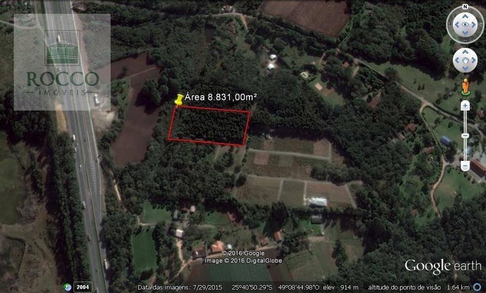 Chácara rural à venda, Miringuava, São José dos Pinhais - CH