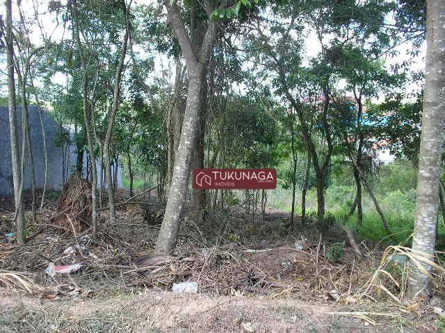Terreno à venda, 300 m² por R$ 250.000,00 - Cidade Parquelandia - Mogi das Cruzes/SP