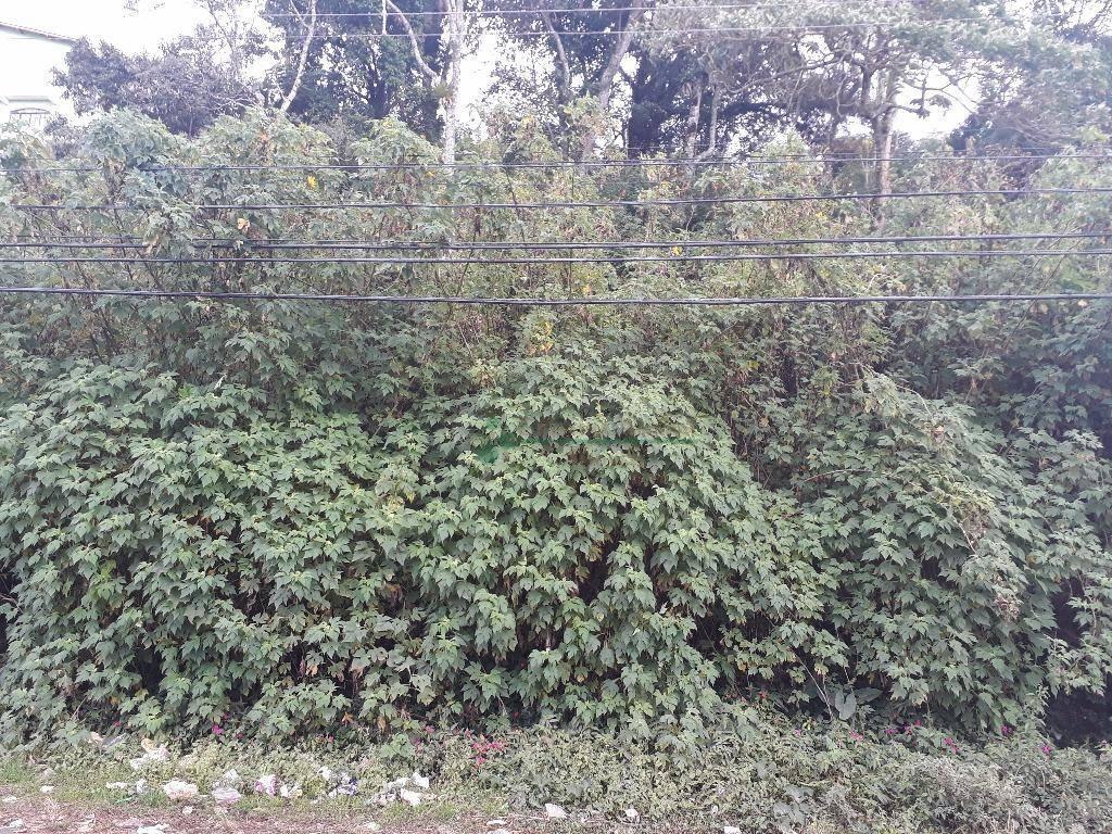 Terreno Residencial à venda em Granja Guarani, Teresópolis - Foto 2