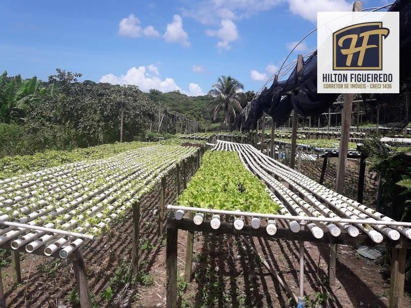 Excelente Chácara  à venda de 12 Hectares com muito Lazer e produção no Município do Conde /PB