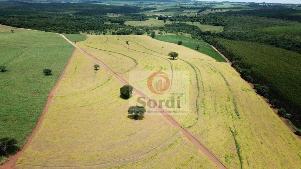 Sítio à venda, 193600 m² por R$ 1.600.000,00 - Zona Rural - Santo Antônio da Alegria/SP