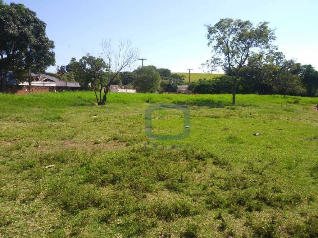 Terreno à venda, 6000 m² por R$ 4.800.000 - Chácaras Campos dos Amarais - Campinas/SP
