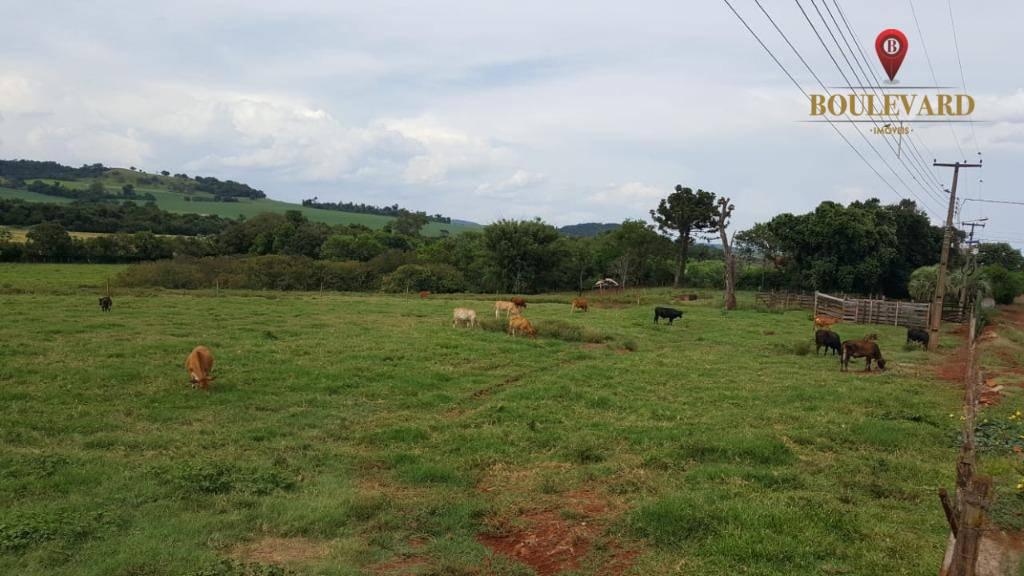 Chácara à venda, 30023 m² por R$ 1.689.000 - Centro - São Miguel do Iguaçu/PR