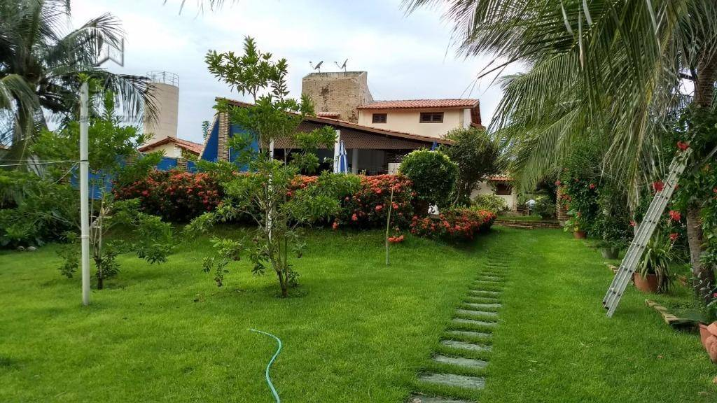 jardim  |  quintal