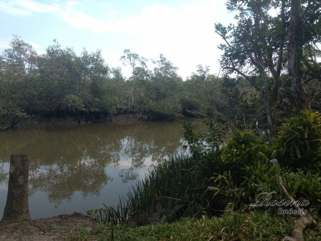Terreno medindo 1 alqueire com fundos para o rio Itaperuçu