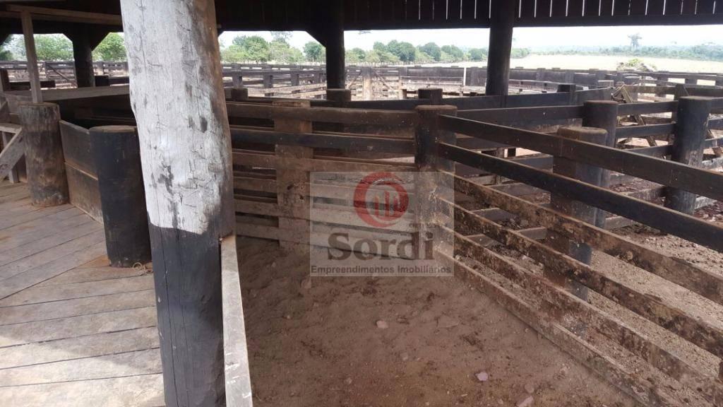 Fazenda à venda, 38720000 m² por R$ 100.000.000,00 - São Sebastião - Altamira/PA