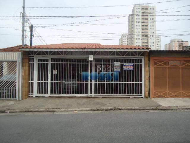Terrea à venda, Vila Prudente.