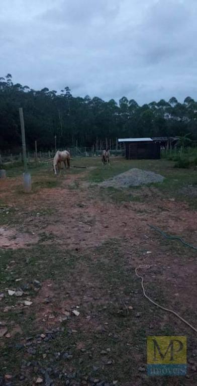 Chácara à venda, 2600 m² por R$ 350.000,00 - Morro Alto - Balneário Piçarras/SC