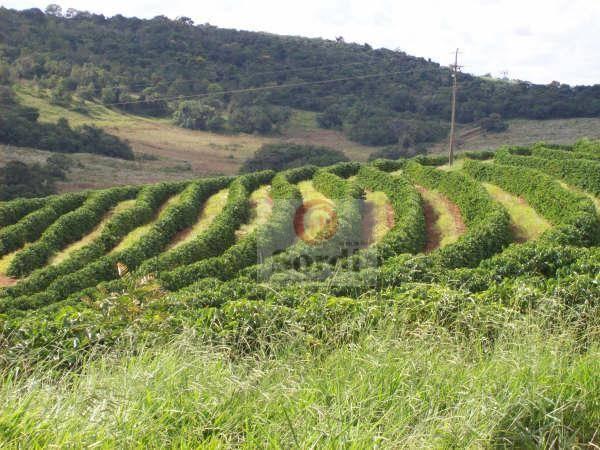 Fazenda rural à venda, Zona Rural, Ritápolis.