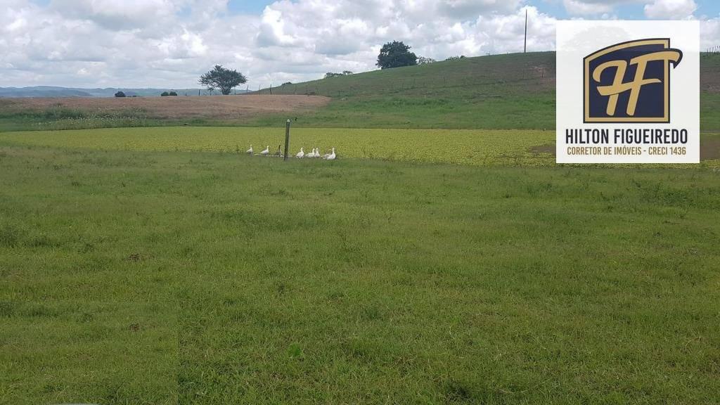 Vendo Fazenda no brejo paraibano c pista  de vaquejada, com toda estrutura e plantada de capim