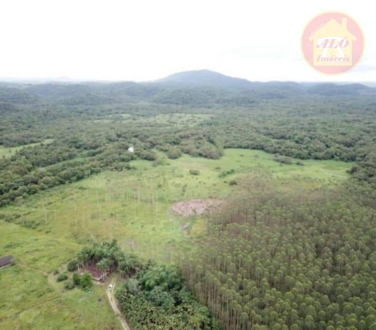 Fazenda com 3 dormitórios à venda, 10150000 m² por R$ 8.000.000,00 - Centro - Sete Barras/SP