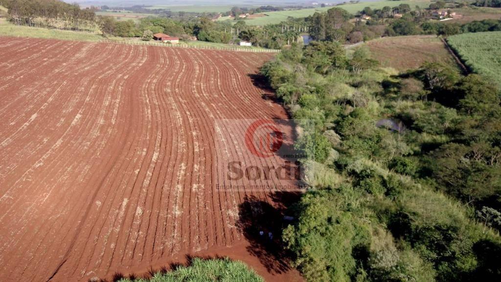 Sítio à venda, 145200 m² por R$ 1.600.000,00 - Centro - Dumont/SP