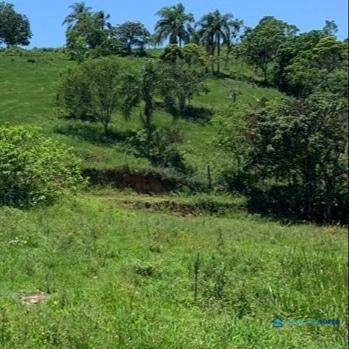Terreno de 21.231m² à venda em Biguaçu
