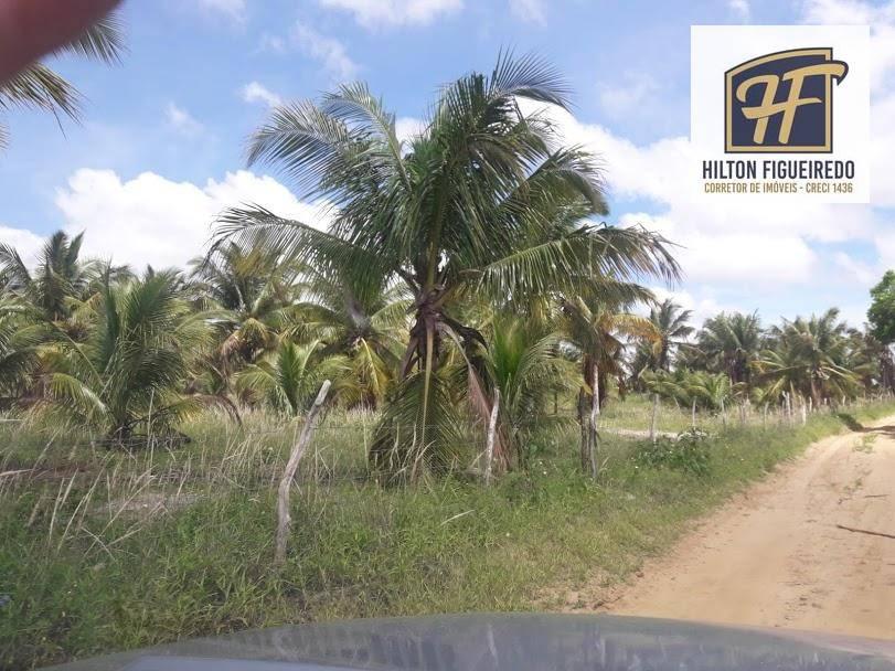 Fazenda de 400 hectares no vale do Mamanguape plantada de cana de açúcar, e muita água